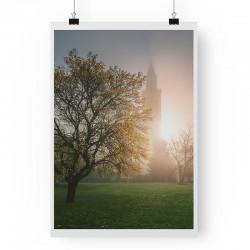 Letní strom
